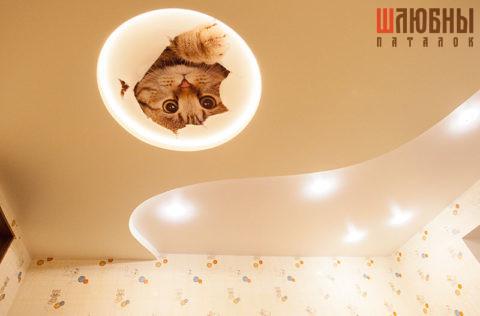 Многоуровневый натяжной потолок с подсветкой с фотоизображением котенка в Могилеве фото