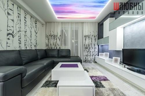 Натяжной арт-потолок в Могилеве фото