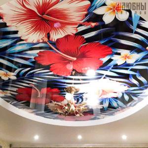 Двухуровневый натяжной потолок с фотопечатью в Могилеве фото