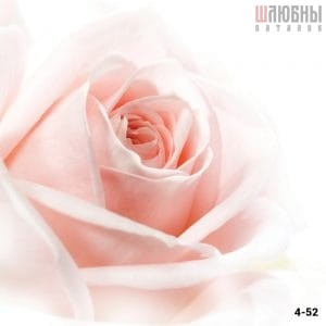 Натяжной потолок цветы 4-52 в Могилеве фото