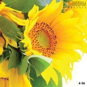 Натяжной потолок цветы 4-56 в Могилеве фото