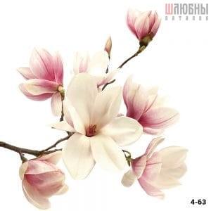 Натяжной потолок цветы 4-63 в Могилеве фото