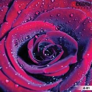 Натяжной потолок цветы 4-81 в Могилеве фото